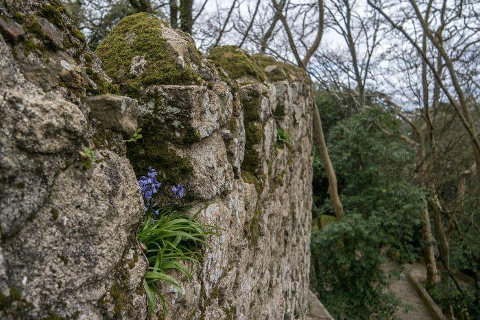 moorish_castle_lebenalacarte6