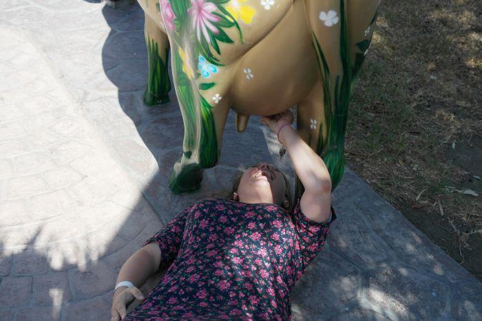 Funpic: Caro melkt Kuh-Statue