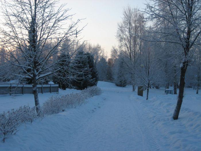 Leben à la carte: Weihnachten in Finnland
