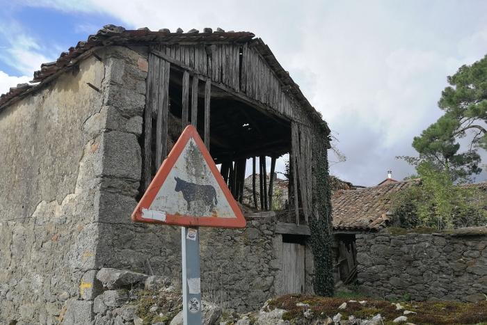Camino Francés: Melancholie vs. erhoffte Flucht aus dem Irrenhaus in Rivadiso und O Pedrouzo (Jakobsweg Etappe 35+36)