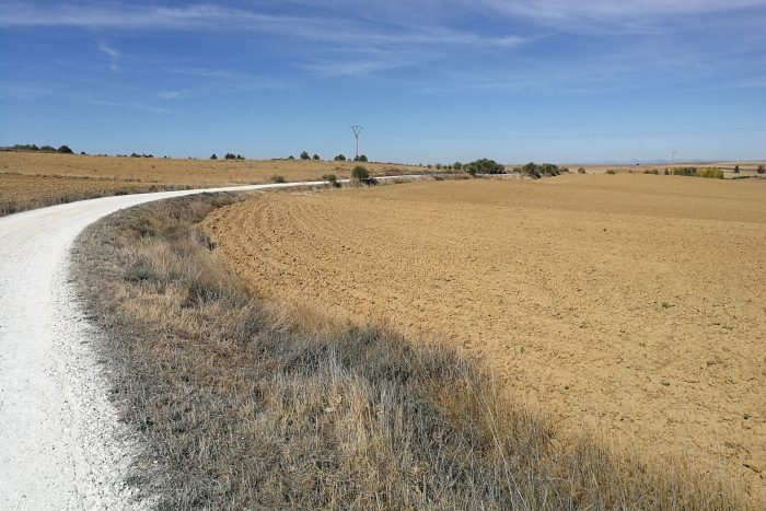 Camino Francés: Einsamkeit - Nach Kurzurlaub allein zurück auf dem Camino nach Sahagún (Jakobsweg Etappe 21)