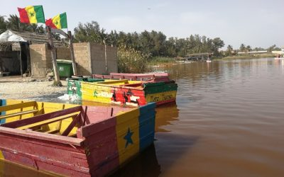 Reise nach Westafrika: 20 erste Eindrücke, Gedanken und Fun Facts aus dem Senegal – und: Warum wir so schnell nicht wiederkommen